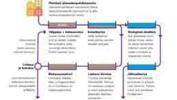 Jäteveden puhdistamisen prosessikaavio