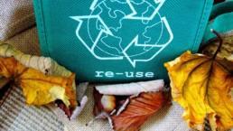 kuvituskuvassa kierrätysmerkki ja syksyisiä lehtiä